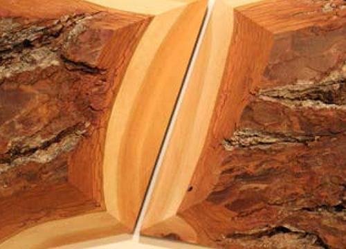 Unregelmäßies Kachelmuster aus dreidimensional geformten Massivholzplatten, die z.B. als Wanddekoration Verwendung finden mit bewusstem Behalten der Rinde